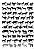 Vector horse silhouettes — Stock Vector