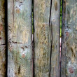 Wood background — Stock Photo #39773405
