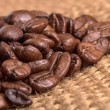 Coffee Bean — Stock Photo #39594493