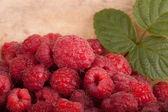 Few raspberries with leaf on wooden background — Stok fotoğraf
