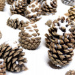 Stock Photo: Cones on snow