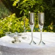 Stock Photo: Wedding attributes