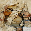 Old house wall — Stock Photo #14053019