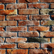 Old house wall — Stock Photo #14053069
