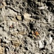 Old house wall — Stock Photo #14053195