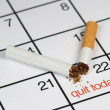 Stok fotoğraf: Quit smoking today