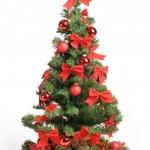 Christmas tree — Stock Photo #15611167
