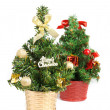 Small christmas tree — Stockfoto