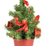 Small christmas tree — Stock Photo #22573773