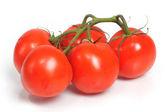 Kilka czerwonych pomidorów — Zdjęcie stockowe
