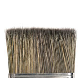 Bristle of brush — Stock Photo