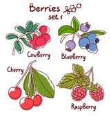 Berries set 1 — Stock Vector
