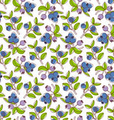 Blueberries pattern — Stock Vector