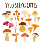 Mushrooms — Stock Vector