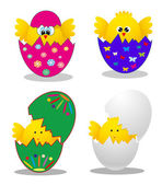 Surprise Yellow Chick Peeking Out Of An Easter Egg. vector illustration — Stock Vector