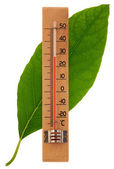 Wooden thermometer on a leaf — Stock Photo