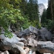 Yosemite landscape — Stock Photo