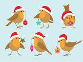 Christmas Robins — Stock Vector