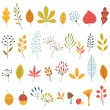 Autumn floral design elements — Stock Vector