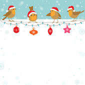 Christmas birds — Stock Vector