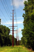 Power-Line-clearing — Stockfoto