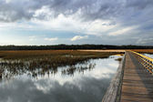 Wetland Boardwalk — Stock Photo