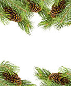 Christmas frame of fir branches — Stock Photo