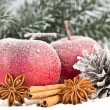Red Apples and cones in the snow — Stock Photo