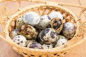 Quail eggs in a straw basket — Stok fotoğraf