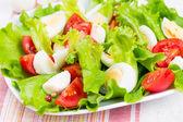 Salad with tomatoes, mozzarella and eggs — Stock Photo