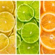 Background with citrus-fruit — Stock Photo #25635975