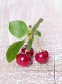 Three ripe cherries — Stock Photo