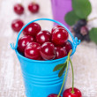 Two buckets with berries — Stock Photo #27311947