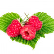 Raspberriesisolated on white background — Stock Photo