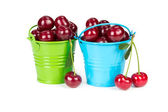 Two buckets with cherries — Stock Photo