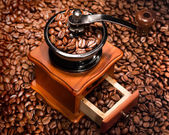 Coffee beans in a coffee-mill. — Photo