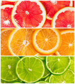 Collage of citrus-fruit — Stock Photo