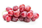 Red grapes in water drops — Stock Photo