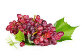 Red grapes with leaves   — Stock Photo