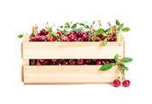 Cherry in wooden box  — Stock Photo