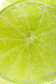Background with fruit lime — Stock Photo