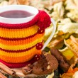 Fruit tea in a cup in a knitted cover — Stock Photo #51383169
