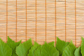 Green Leaves and bamboo — Stock Photo