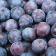 Many Plums — Stock Photo #44903701