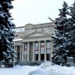 The Pushkin Museum of Fine Arts in Moscow, Russia — Stock Photo #19500725