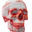The blood stained skull, isolated on the white — Stock Photo