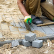 The worker paves a stone path - Stock Photo