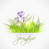 Violet crocuses egg in grass — Stock Vector