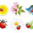 Flowers with ladybug on white background — Stock Vector