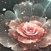 Pink and gray abstract  flower — Stock Photo